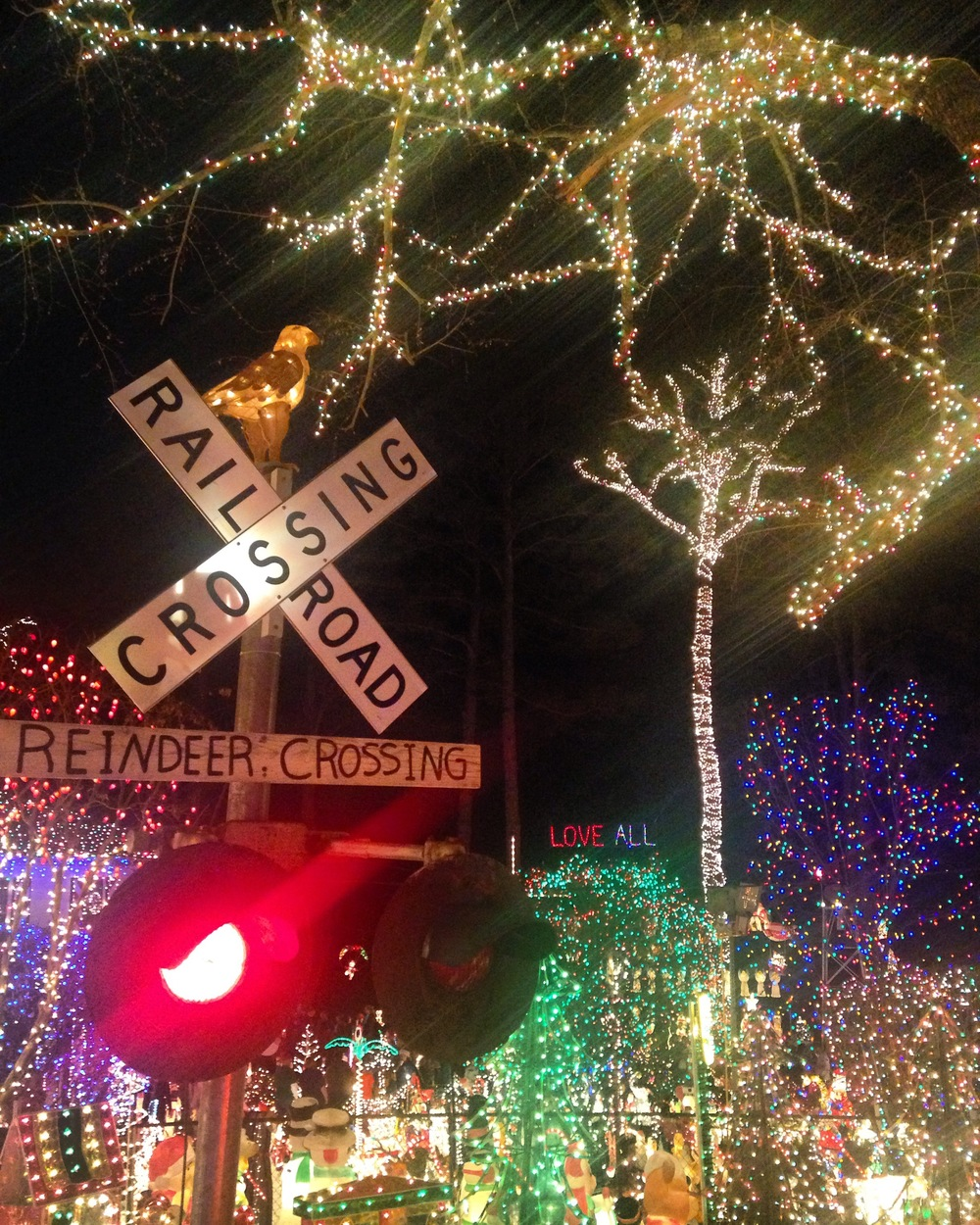 """4. We love the """"tacky lights"""" in Richmond and this year we went out a few times to catch the best ones around."""