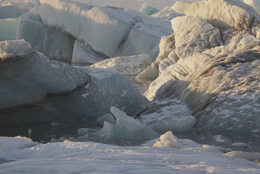 Photo 4 Iceberg.jpg