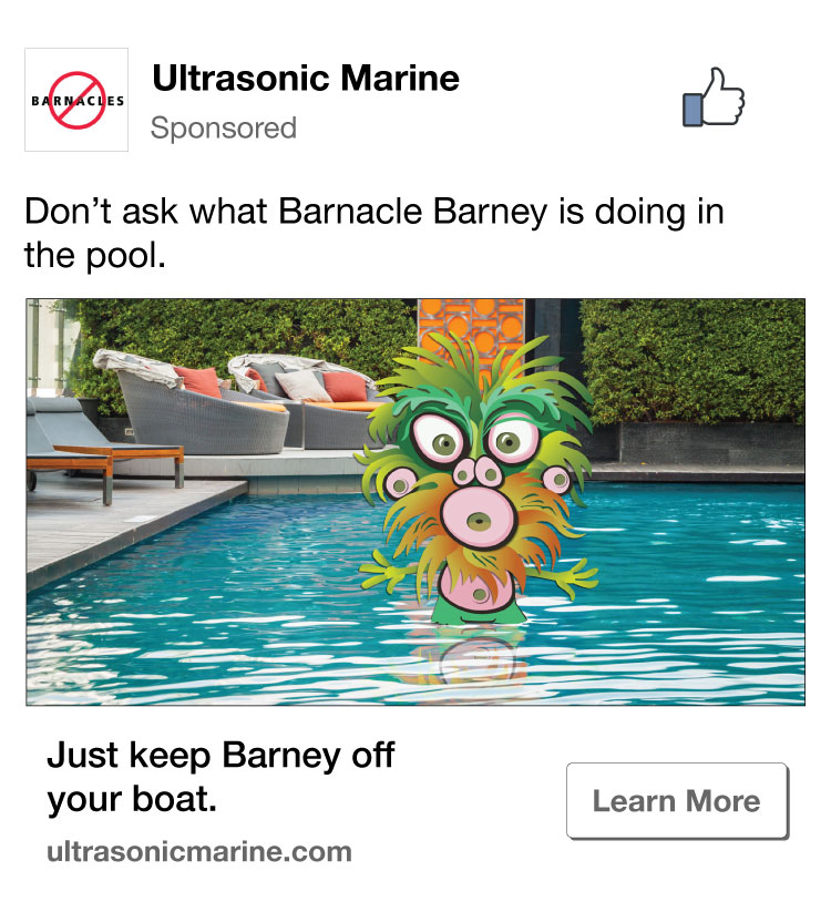 Barney-Pool-Facebook-Ad.jpg