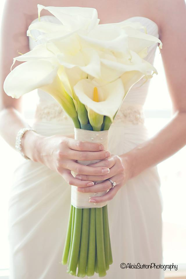 WNC Weddings.jpg