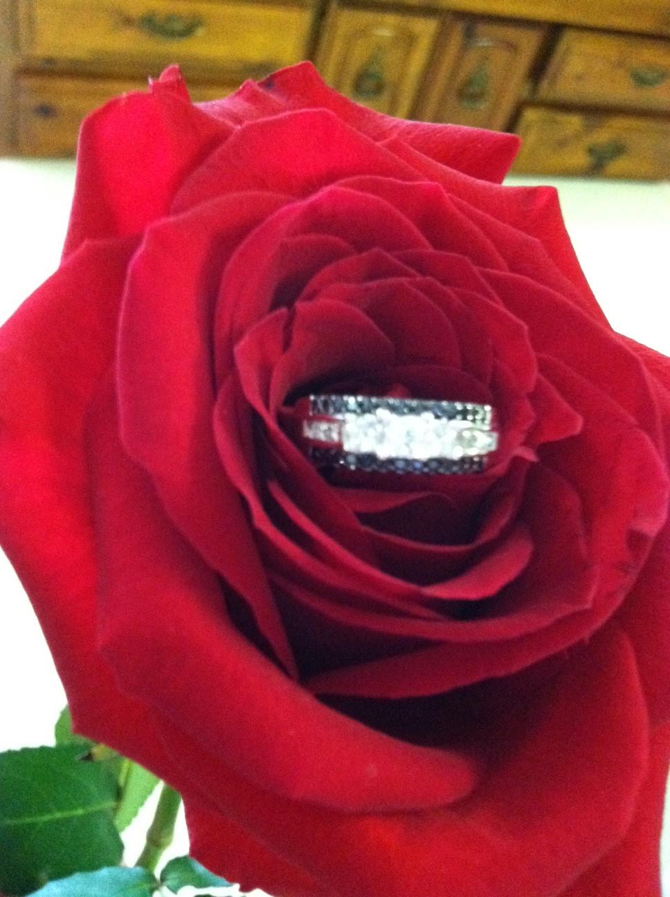 Wedding Proposal in Asheville.jpg