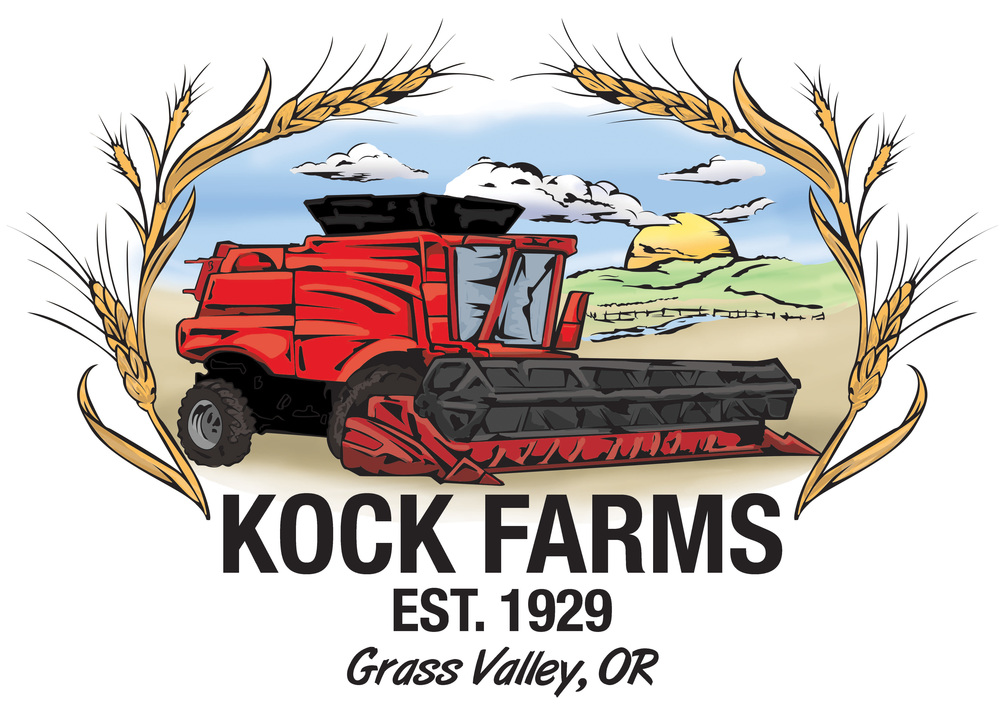 KockFarms_DecalColor 2.jpg