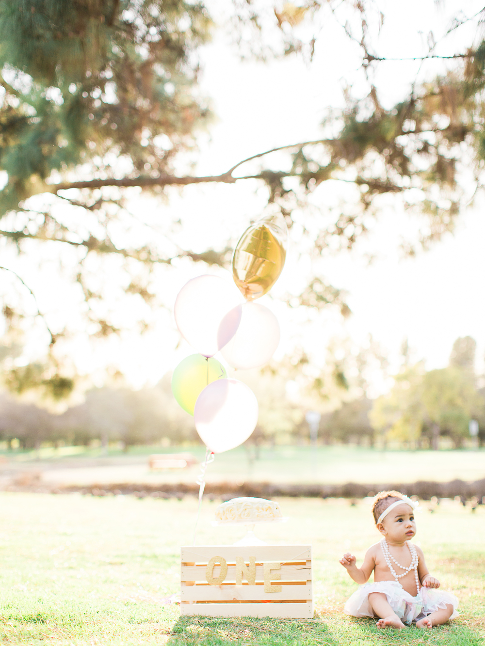 AleiahRei_1stBirthday_Brandon J Ferlin Photography-71.jpg