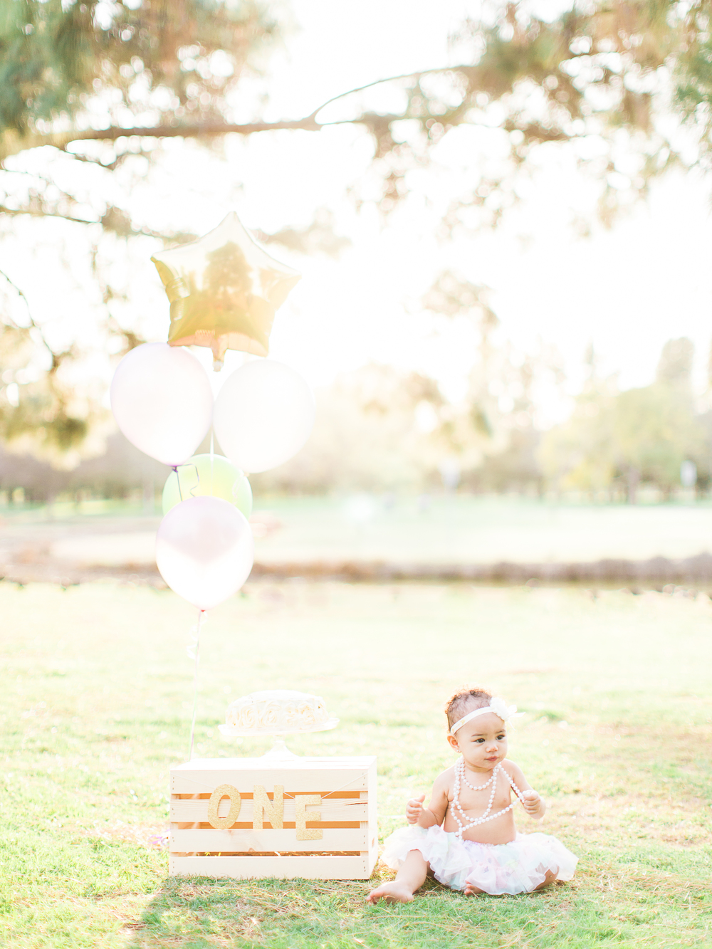 AleiahRei_1stBirthday_Brandon J Ferlin Photography-77.jpg