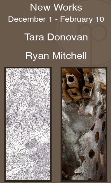 Tara Donovan Ryan Mitchell