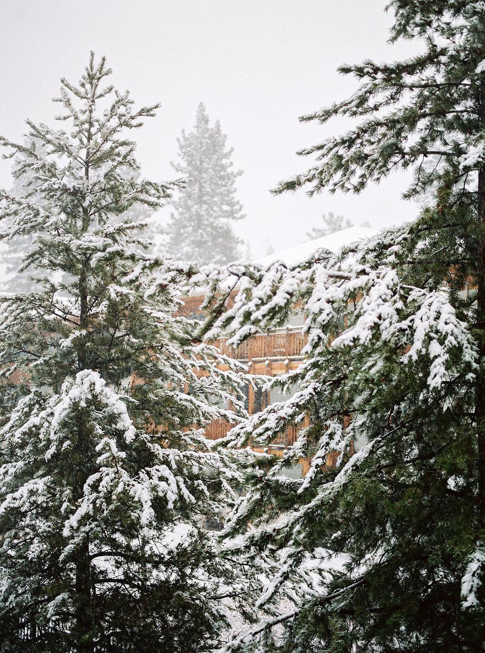Tahoe2016_014.jpg