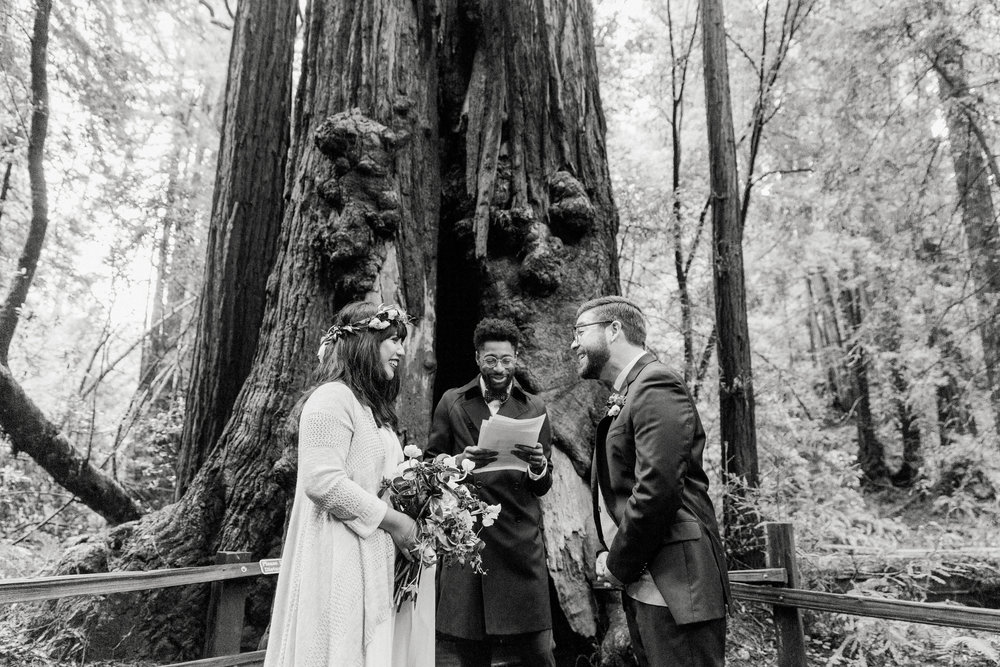 CA_Wedding_Muir_Woods_133.jpg