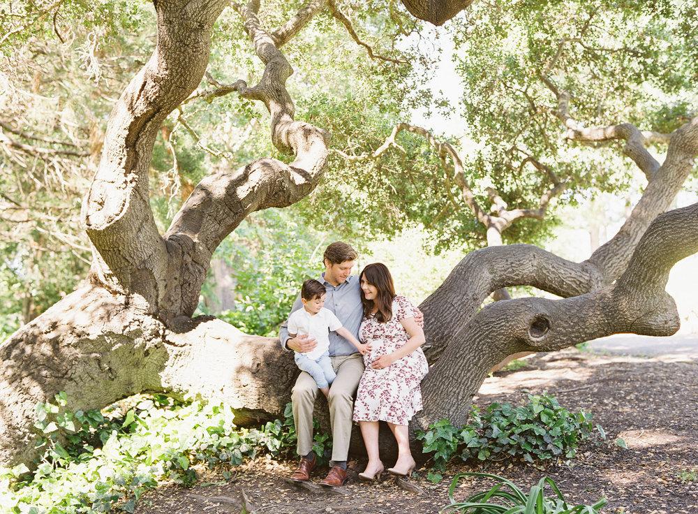 McDaniel_Family_Maternity_063.jpg