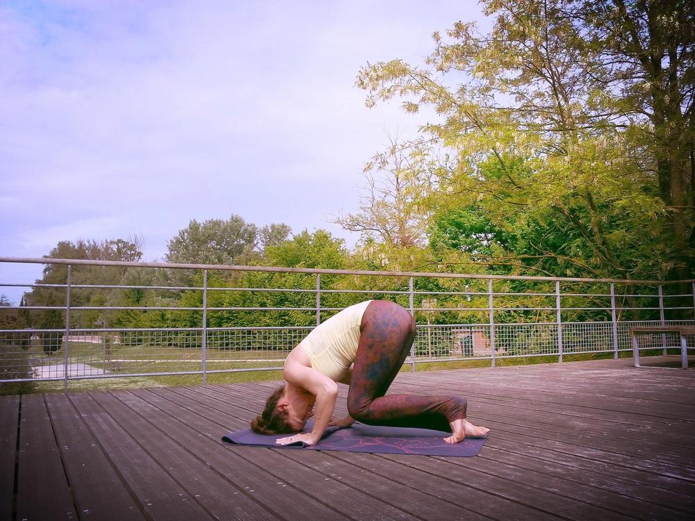 yoga-blagnac-parc-ramiers-13.jpg