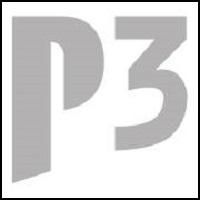 P3 Digital Services