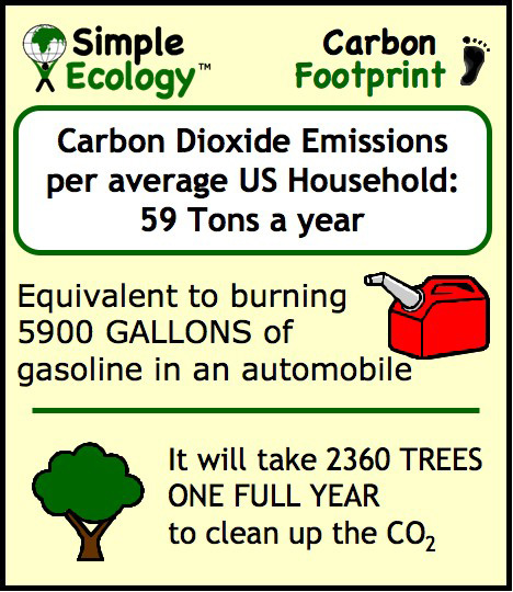 reduce your carbon footprints in easy Teach kids about this environmental issue and discover easy ways to reduce your carbon footprint infographic about your own carbon footprint, carbon offsets and.