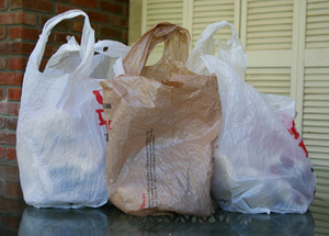 03474c673f Paper or Plastic Shopping Bags  — Simple Ecology