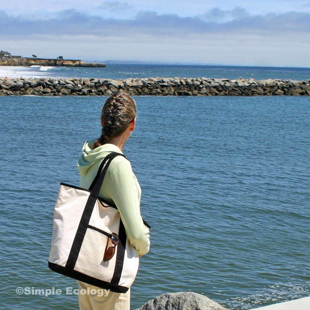 SDuty Santa Cruz SW.jpg