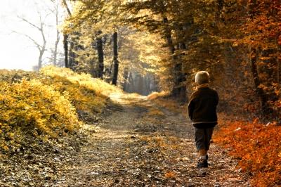 Imagen de chrisroll / FreeDigitalPhotos.net