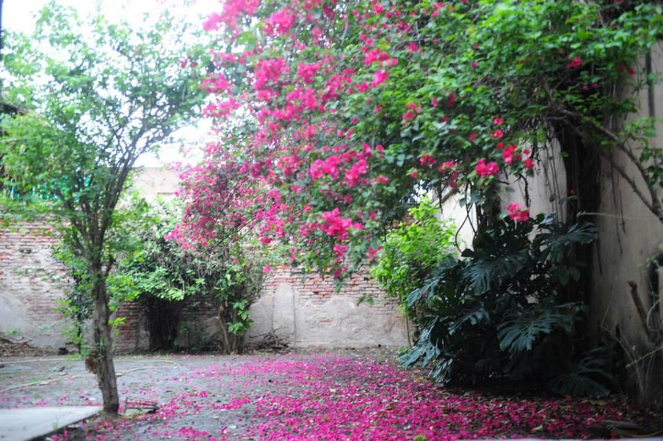 Fotografía cortesía de Casa Caminantes