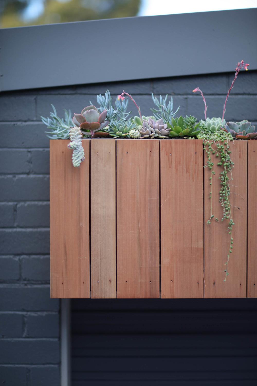 Outdoor Establishments Succulent Garden