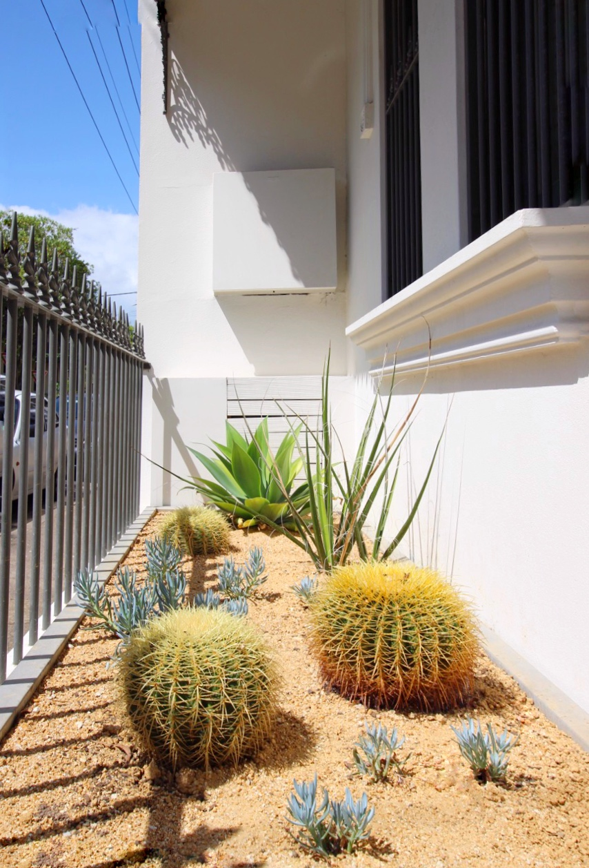 Waterwise Garden Design by Outdoor Establishments Sydney