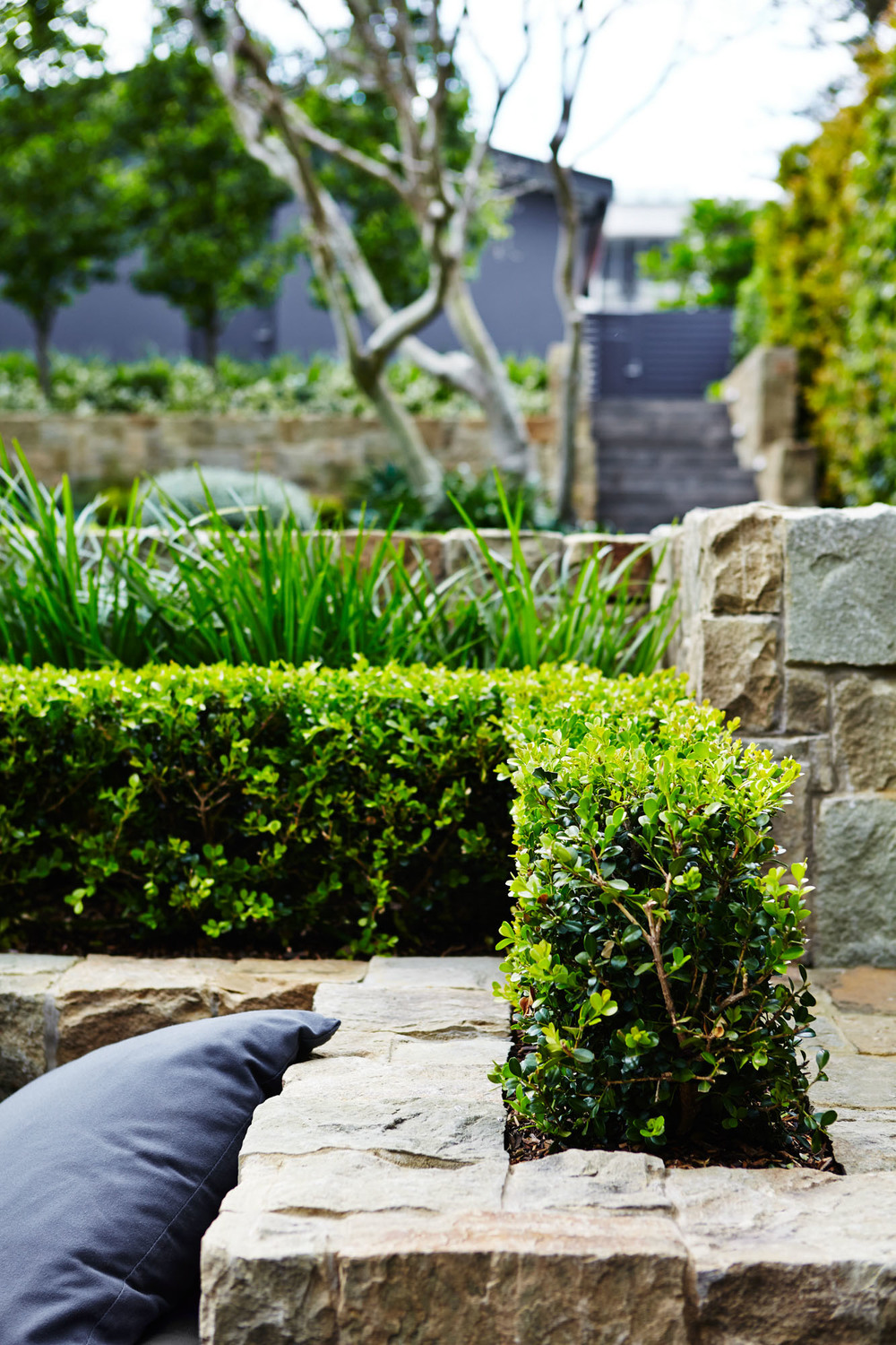 Outdoor Establishments North Shore Landscape DesignSydney