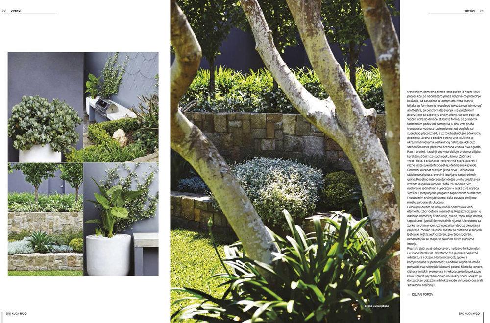 mosman garden 3.jpg