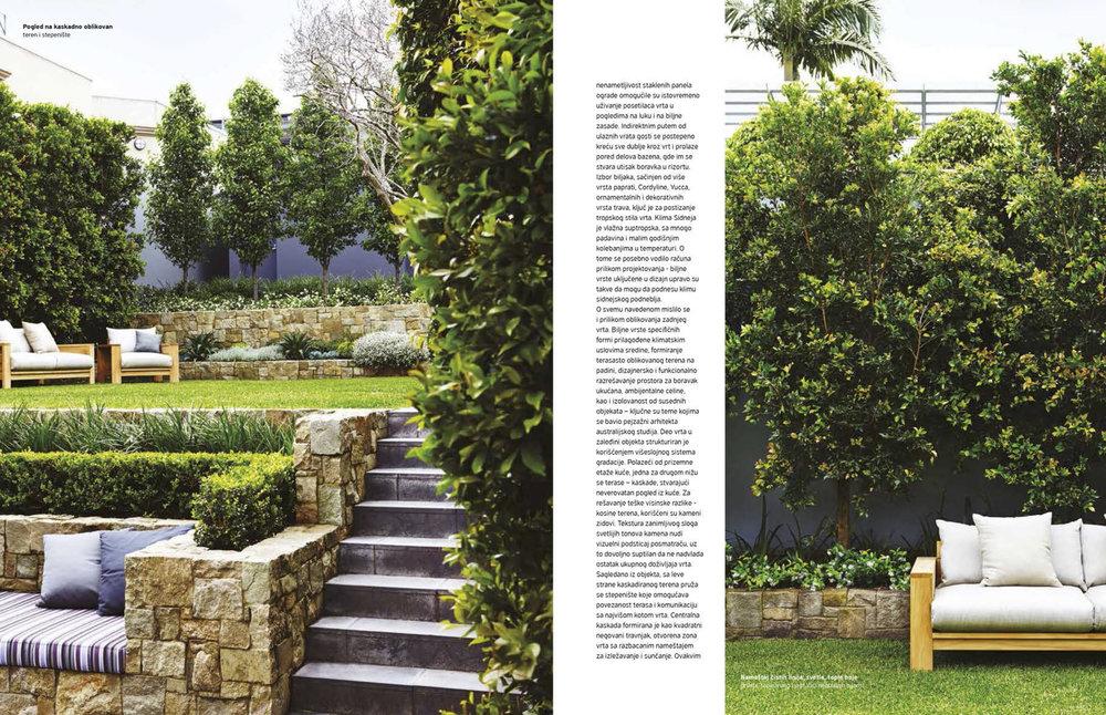 mosman garden 2.jpg