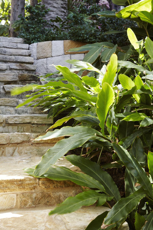 Landscape Architects Palm Beach by Outdoor Establishments