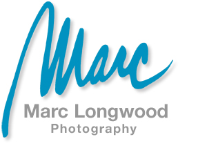 San Francisco/Sacramento Professional Photographer ~ Commercial, Corporate Marketing, Magazine Editorial, Hospitality