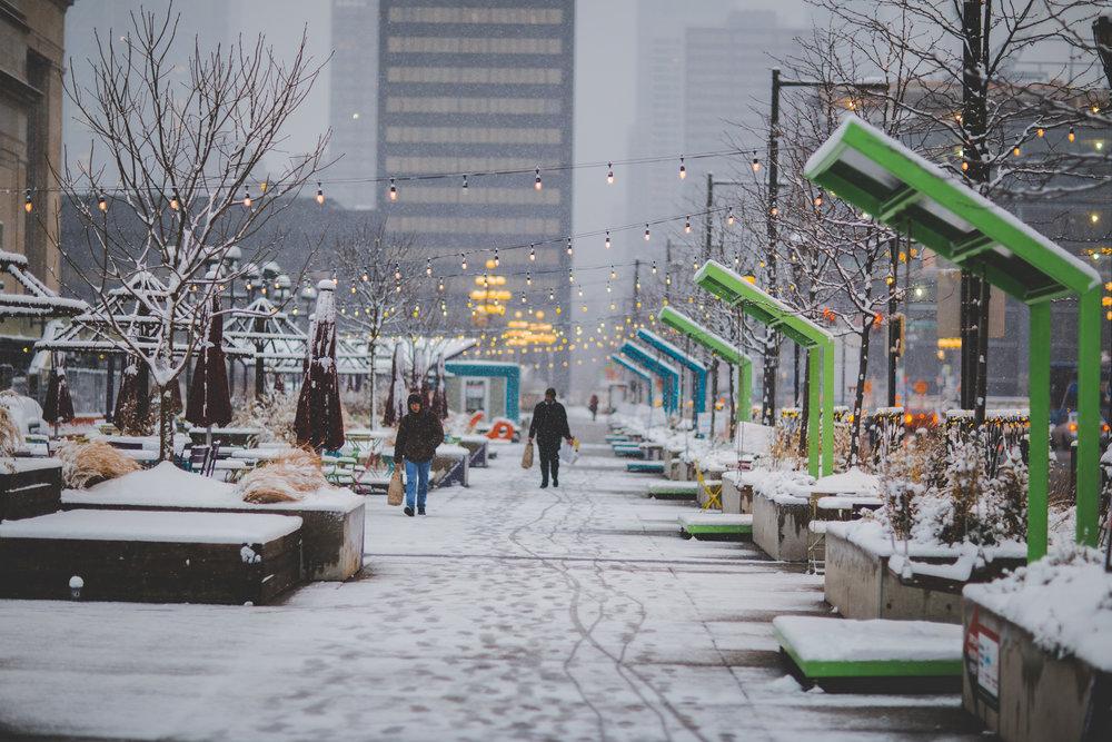 Philadelphia in the snow-17.jpg