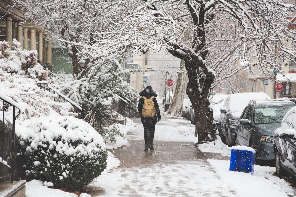 Philadelphia in the snow-1.jpg