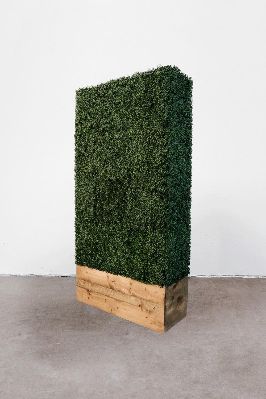 $135 Hedge Wall