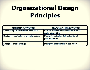 org design principles.jpg