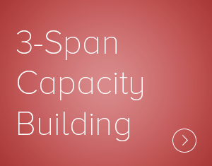 3-Span Capacity Building Lens shows what it really takes to create a lasting change in an organization's culture, or build a new organizational capability