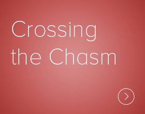 Crossing the Chasm Lens provides means for seeing (and measuring) today's dominant organizational cultures — and helps visualize a much more generative alternative
