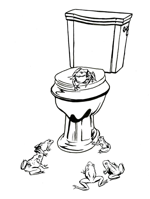 frogstoilet.jpg