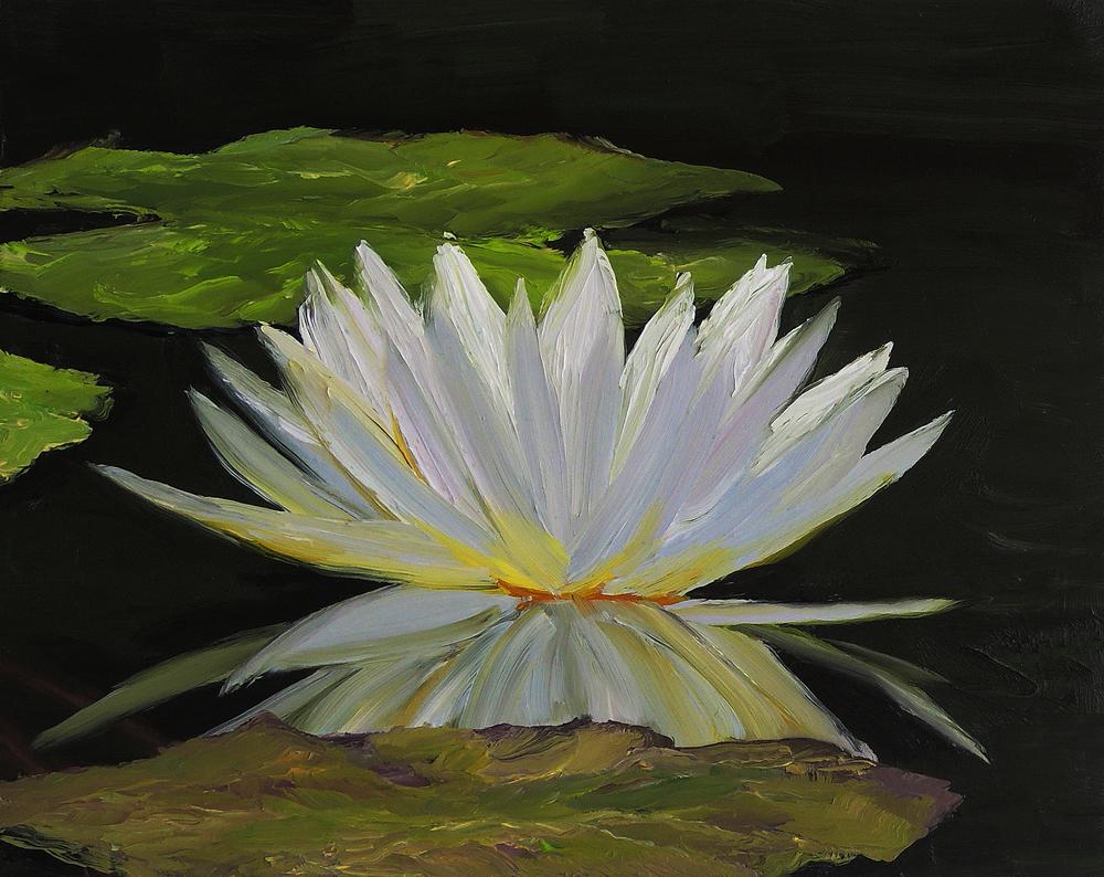 White Lotus.jpg