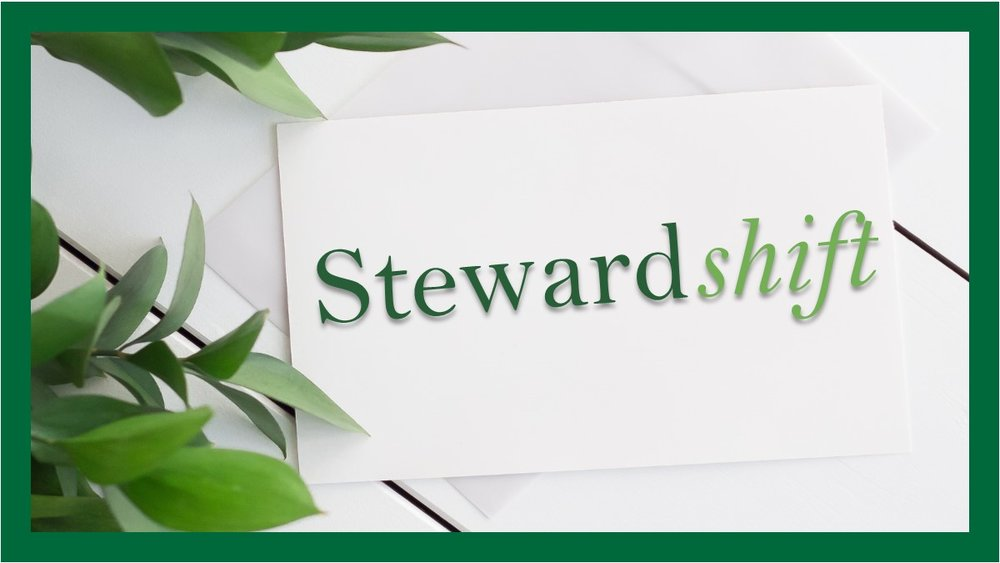 Steward shift  2018