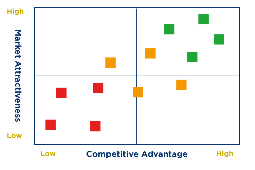 nem cama (Competitive Advantage Market Attractiveness)