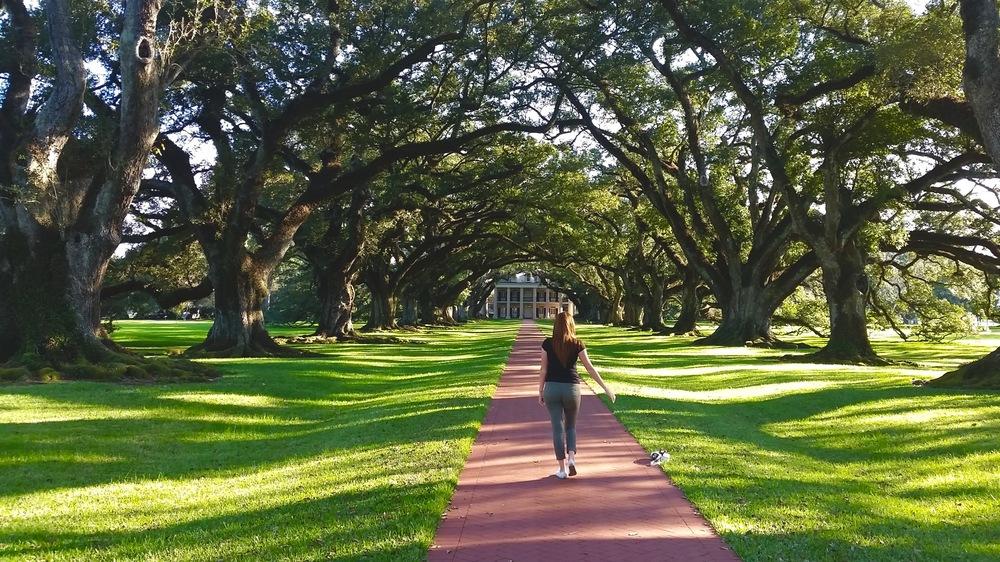 Oak Alley Plantation - Day Trip Outside New Orleans