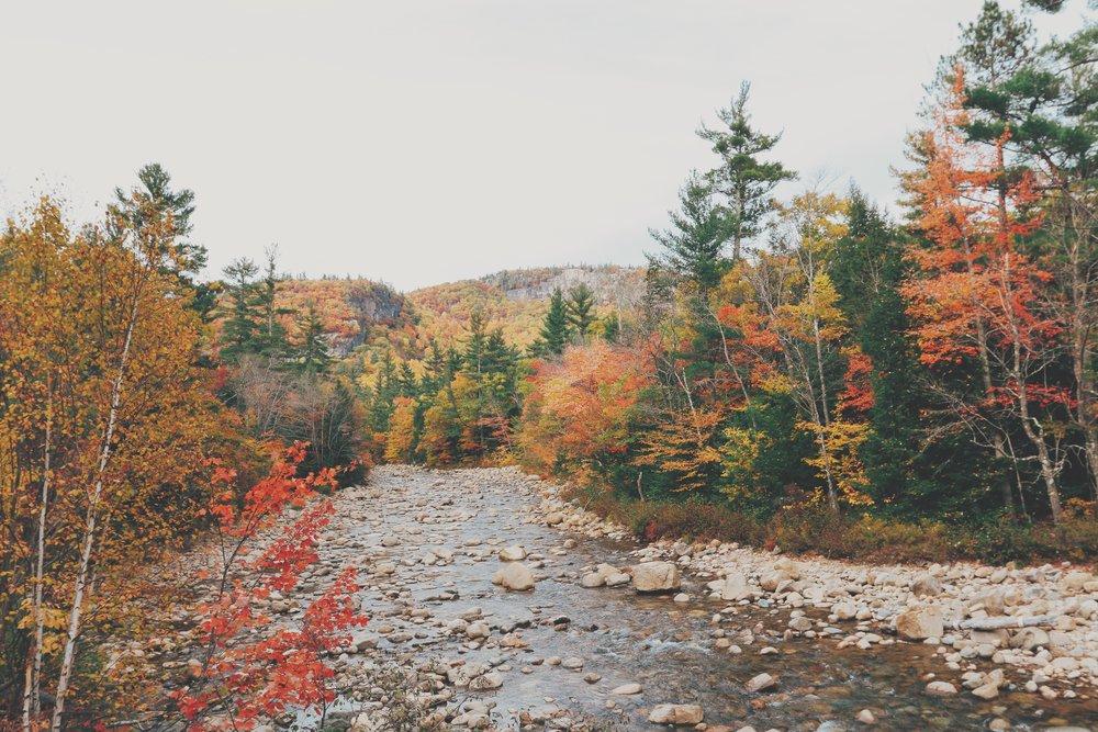 「今年我們也該去賞楓了吧?」 「行,走吧!」 簡單兩句話,我們就在十月第二個週末,循著紅葉一路往北。 滿山斑斕,三個多小時的車程離不開眼。如果秋天有家,大概就在這山裡。 我們穿梭在和New Hampshire明信片一模一樣的田園與深山裡,公路旁滾滾河流上都飄滿了落葉。搖下車窗,沈浸在只屬於秋天的涼爽氣息裡。