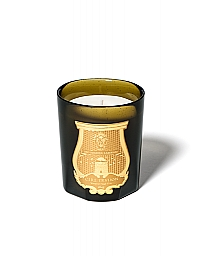 cire-trudon-candle-spiritus-sancti-270g-55-65-hours-france-256px-256px.jpg