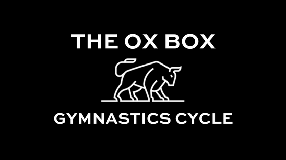 THE OX BOX (1).png
