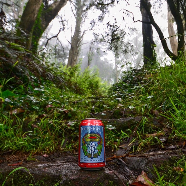 Abominable Ale in the fog