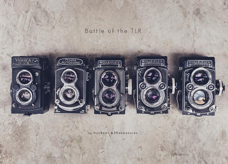 1. Yashica 124G  2. Minolta Autocord   3. Rolleiflex T  4.Rolleilex 3.5F   5. Rolleiflex 2.8F