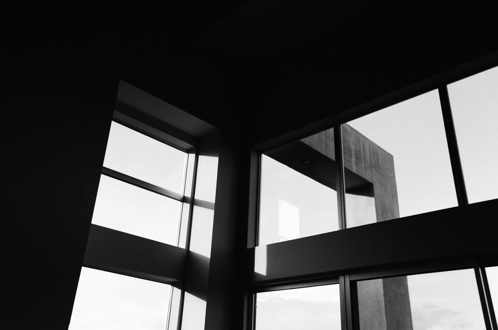 cameliamanea-home-windows-bw.jpg
