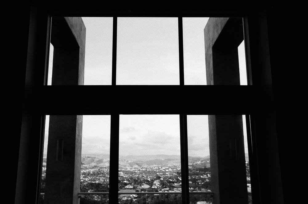 cameliamanea-home-view-bw.jpg
