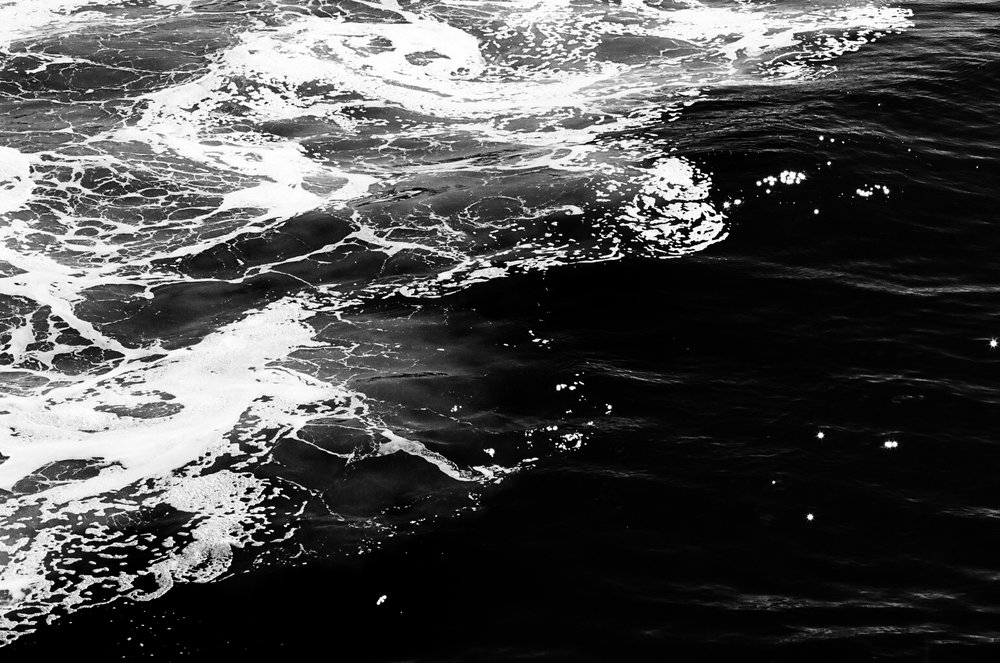 waves-film-bw-cameliamanea.jpg