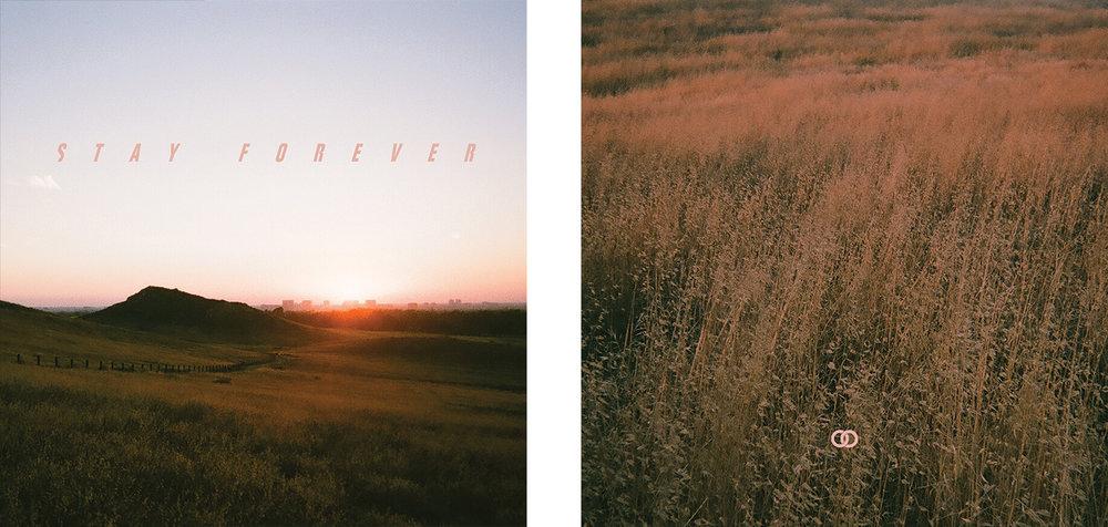 stay-forever-album-art-cameliamanea.jpg