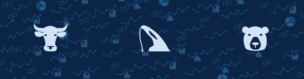 Orca-Banner-2.5 (1).jpg
