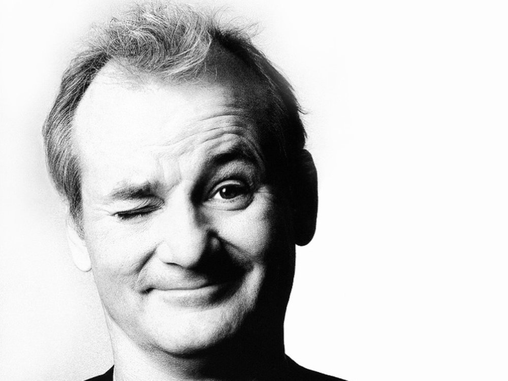 Bill Murray as Bill Murray