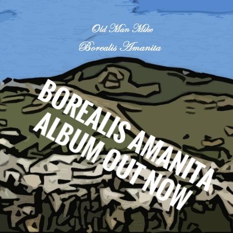 borealis-amanita.jpg
