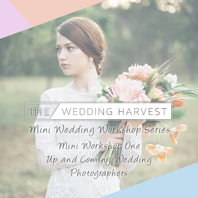 The Wedding Harvest 640px INSTAGRAM.jpg